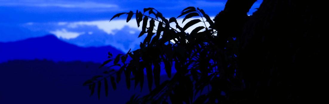 cropped-mg_1718-1-1-2.jpg
