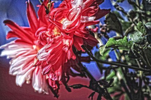 flowerpainted3