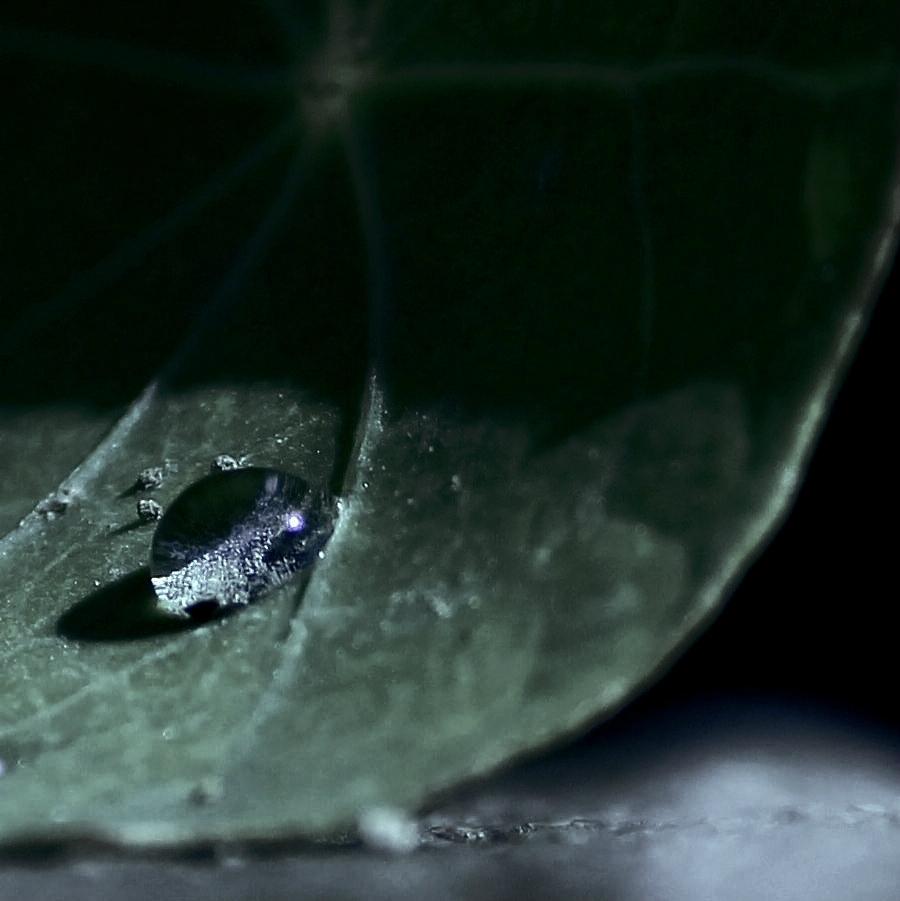 droplet blue